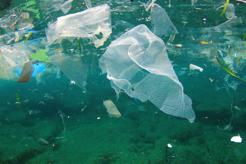 """""""O que não acaba no lixo acaba no mar"""": a mensagem do Oceanário para acabar com a poluição dos oceanos"""