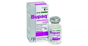 Plurivet lança nova Buprenorfina