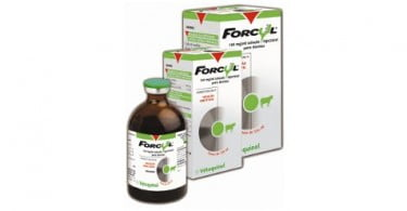 Vétoquinol lança Forcyl® 250 ml