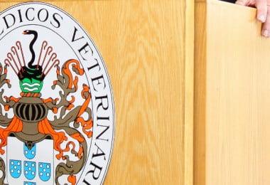 OMV abre candidaturas aos seus órgãos para o triénio 2020-2023
