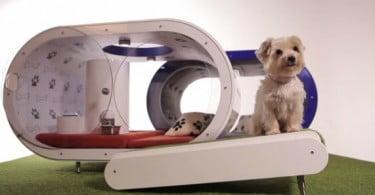 Samsung cria casota de luxo para cães
