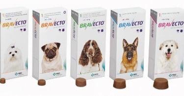MSD Animal Health lança Bravecto