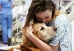 Cães podem ser terapêuticos para pacientes com cancro