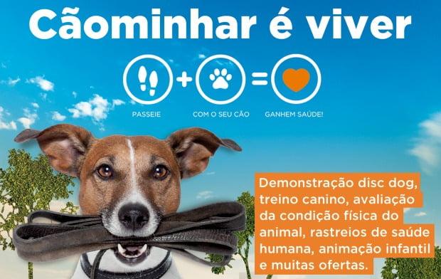 Clínicas OneVet Group promovem Cãominhadas