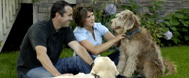 700 milhões de famílias com animais de companhia