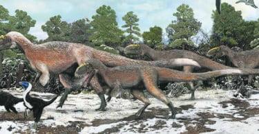 Descoberto maior animal com penas
