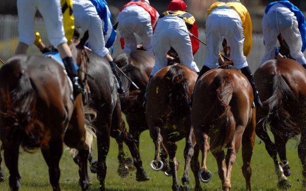 Sites de apostas de cavalos
