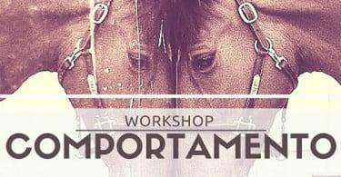 workshop equinos