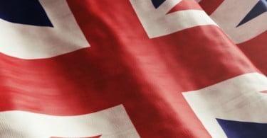 Brexit: britânicos aprovam novas regras para registo de enfermeiros veterinários