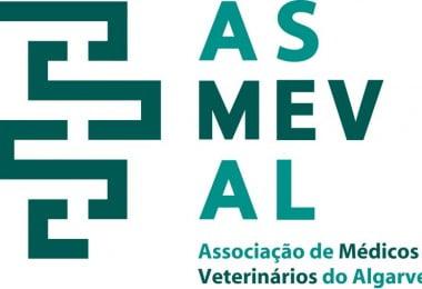 médicos veterinários do Algarve