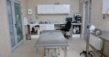 clínica veterinária Veterinária Atual