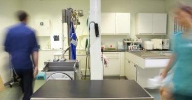 Consultório veterinário - Veterinária Atual