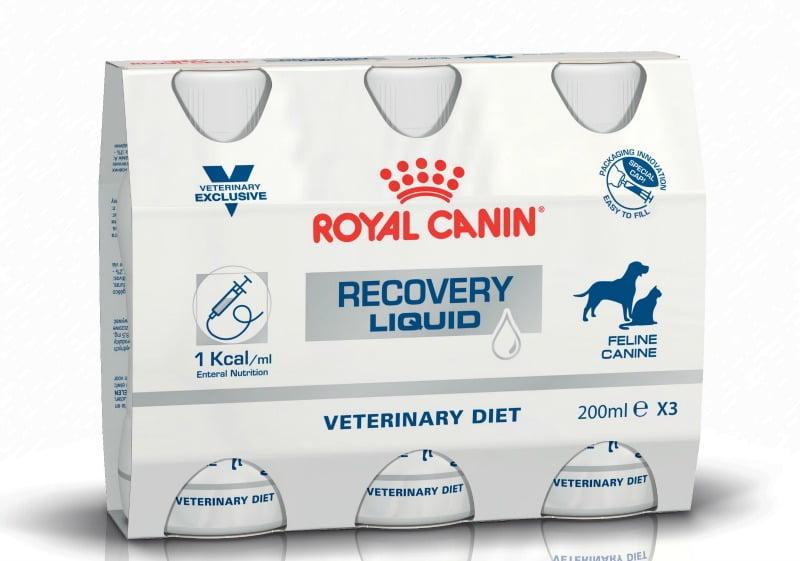 nutrição Royal Canin