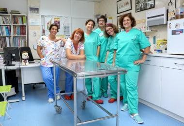 clinica-vet-corroios-veterinariaatual