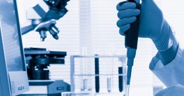 Parlamento Europeu proíbe testes em animais na indústria cosmética