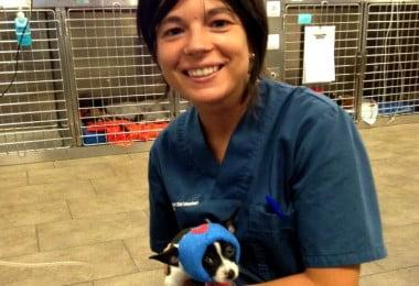 maria-oliveira-veterinaria-atual