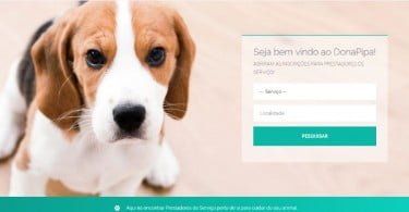 Dona Pipa - plataforma de serviços para cães - Veterinária Atual