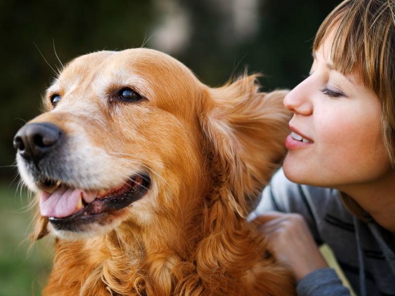 Donos de cães vivem mais tempo