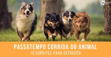 PASSATEMPO CORRIDA DO ANIMAL