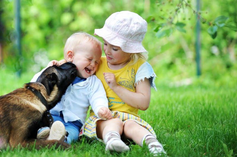 bebé com cão - Veterinária Atual