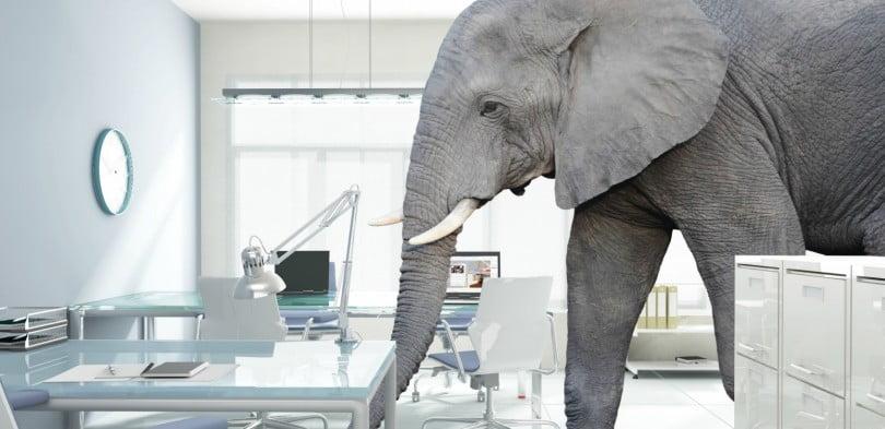 Como fazer dinheiro com uma clínica veterinária