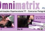 Omnimatrix