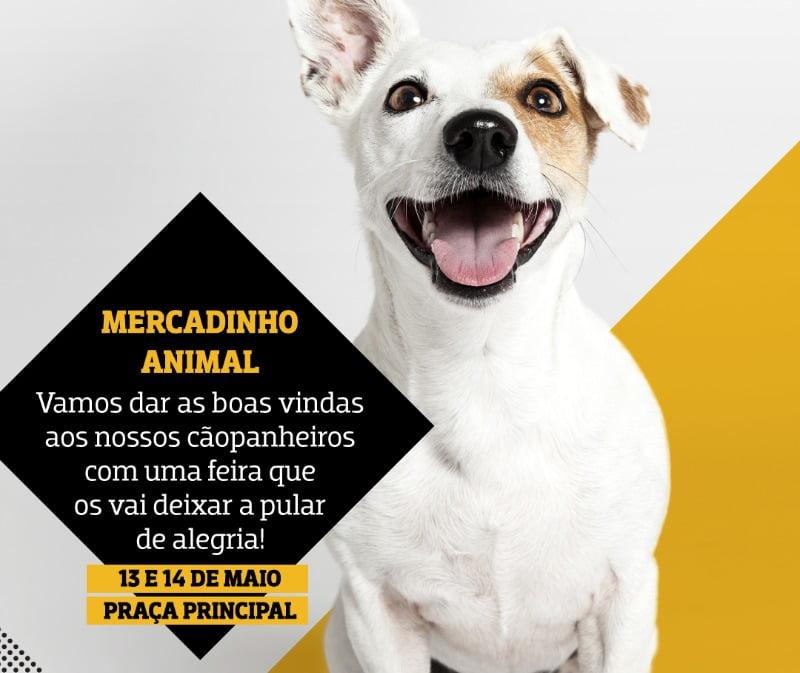 cão - centro comercial Alegro Alfragide - Veterinária Atual