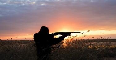 UE pede o fim do chumbo nas munições de caça