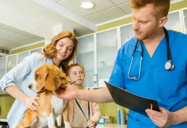 clínica veterinária - Veterinária Atual
