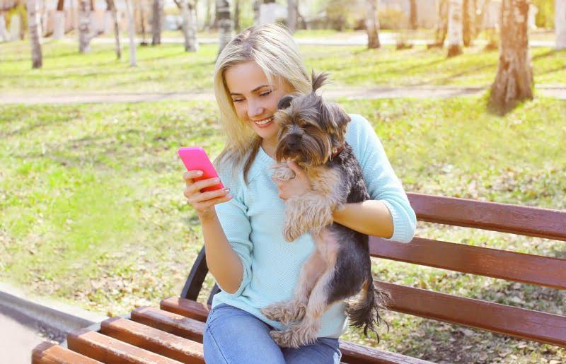 rapariga com smartphone e cão