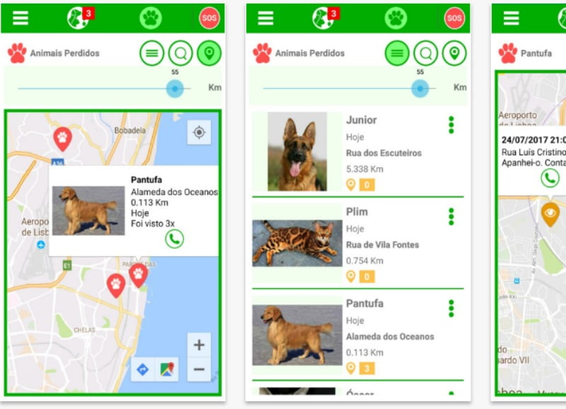 Perdeu o seu animal? Esta app nacional ajuda-o a encontra-lo