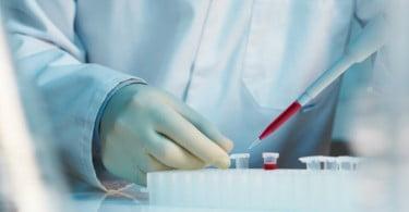 Onevetgroup lança serviço de Medicina Regenerativa em dois hospitais