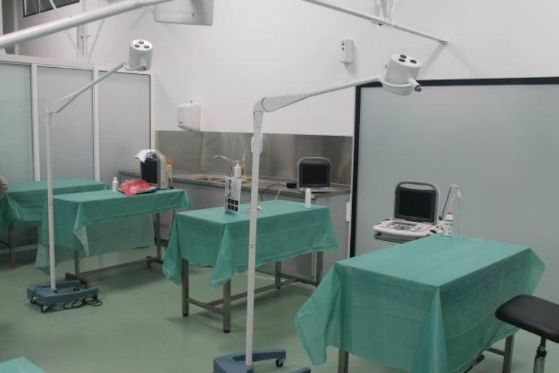 Curso de Traumatologia e Ortopedia do Centro de Formação Montenegro volta em janeiro