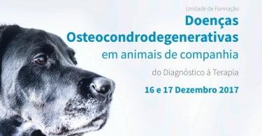 Doenças Osteocondrodegenerativas: do diagnóstico à terapia