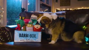 Bark Box - Veterinária Atual