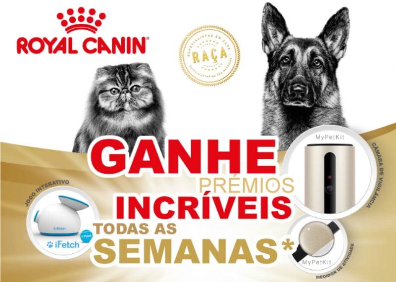 Royal Canin oferece prémios com gama Breed
