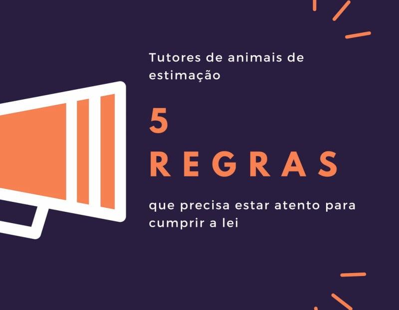 Infografia: 5 regras para donos de animais de estimação