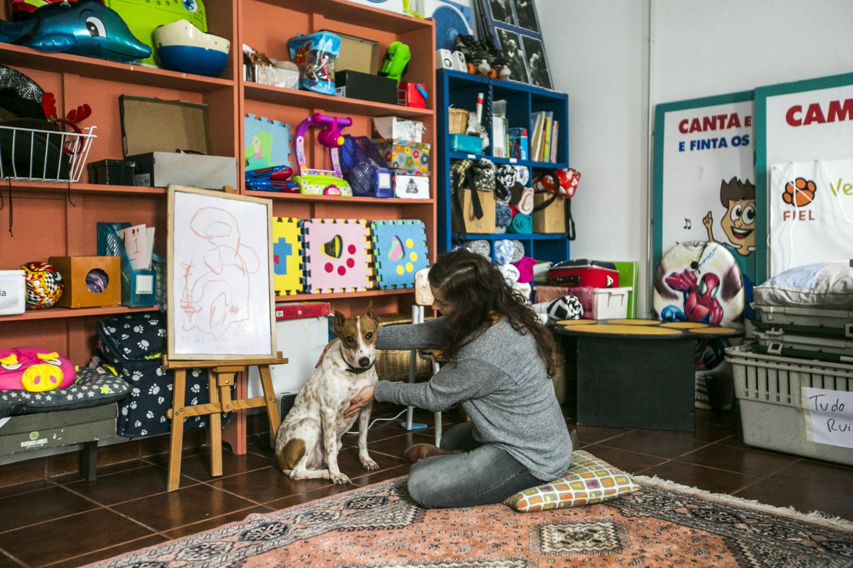 MargaridaCamara7-veterinariaatual