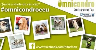 Omnicondro lança novo passatempo no Facebook para sensibilizar para a condroproteção preventiva