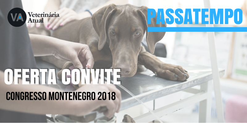 Convite Congresso Montenegro