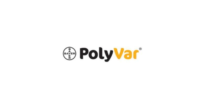 PolyVar - A nova solução para gestão sustentável da Varroa
