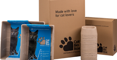cat bio box veterinariaatual