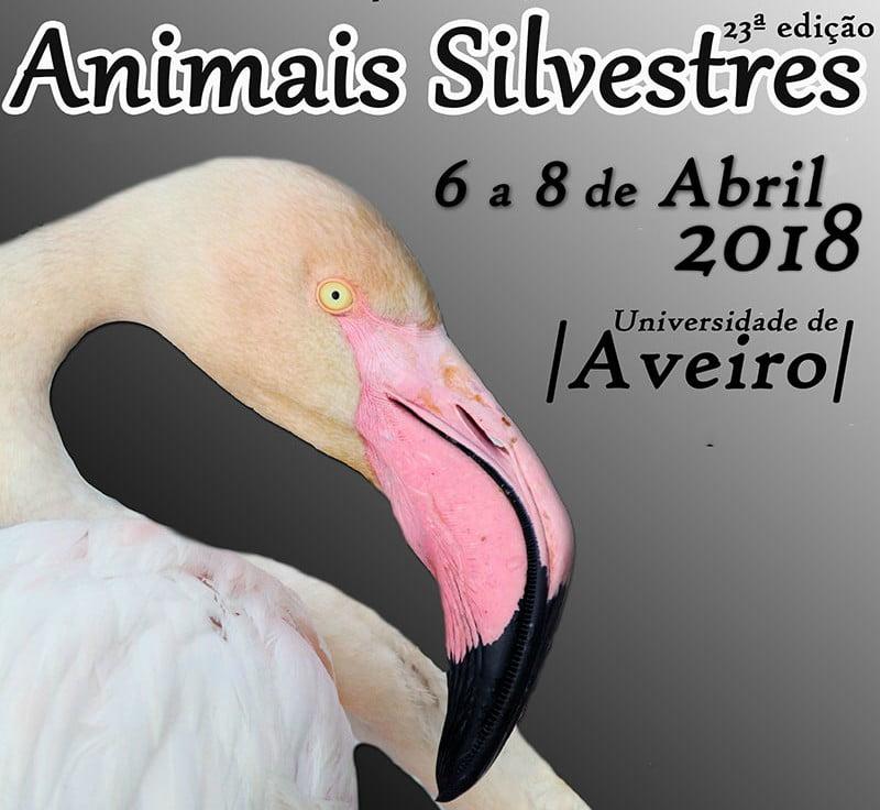 Recuperação de Animais Silvestres: associação promove workshops em abril