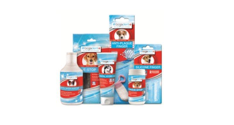 Bogar recebe prémio por gama de produtos de higiene oral