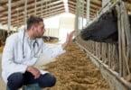 Carreira especial de inspeção veterinária aprovada pelo Governo