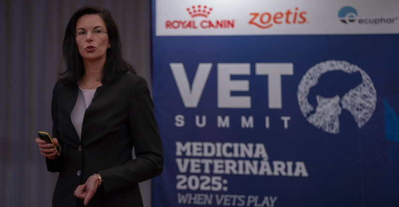 VetSummit: Vets can play together