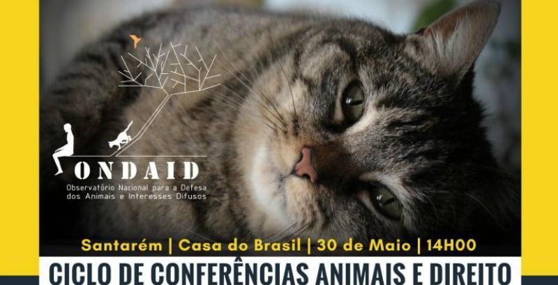 Santarém recebe conferência sobre Direitos dos Animais