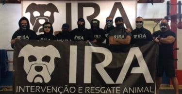 IRA vai abrir CAMV