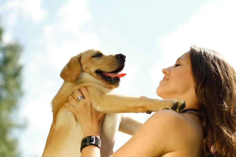 Dúvidas sobre Direito Animal? Sessão de esclarecimento chega a Setúbal