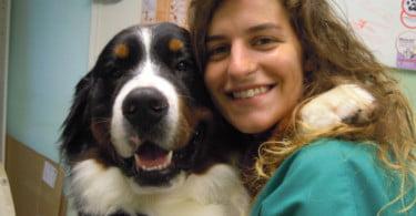 """""""No Reino Unido, os médicos veterinários estão mais dependentes dos enfermeiros"""""""